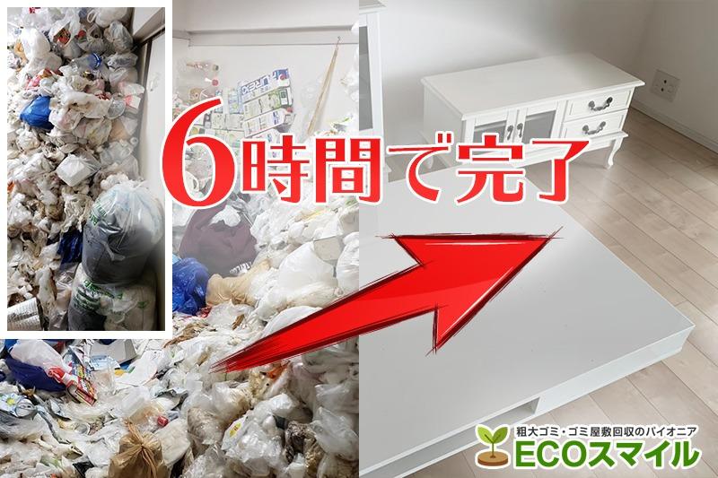 格安おススメ業者のトラック積み放題でのゴミ屋敷の掃除・片付け代行、不用品回収|神奈川県相模原市南区の現場レポート